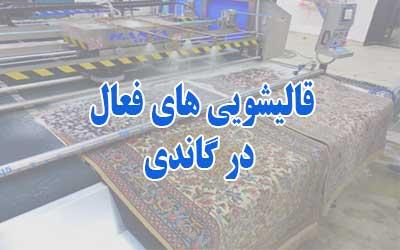 قالیشویی گاندی