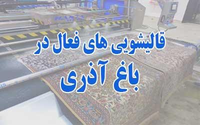 قالیشویی باغ آذری