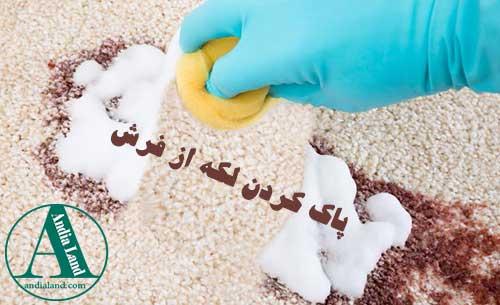 پاک کردن لکه ها از روی فرش