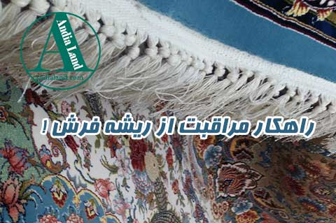 محافظت ریشه فرش از پوسیدگی و زرد شدن